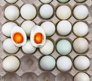 Eggs salted cut in half. On egg tray Royalty Free Stock Image