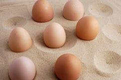 Eggs on sand. stock photo