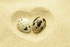 Eggs on the sand Stock Photos