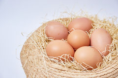 Eggs set on thatch Royalty Free Stock Photo