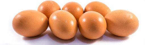 Eggs. Seven eggs on a white background Stock Images