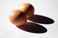 Eggs in the Shadow Royalty Free Stock Photography