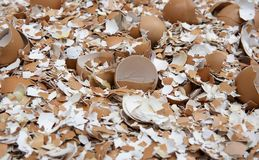 Eggs shell break up. Eggs shell are broken in to peces Stock Images