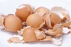 Eggs shell scattered Stock Images