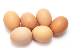 Eggs. Six brown eggs on a white background stock photo