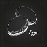 Eggs sketch 1 Stock Photo