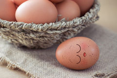 Eggs sleep Stock Photos