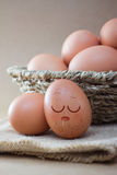 Eggs sleep Royalty Free Stock Images