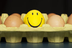 Eggs and smiley. Eggs and a smiley face Royalty Free Stock Photos