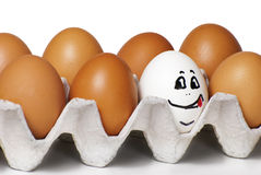 Eggs smiling Stock Image