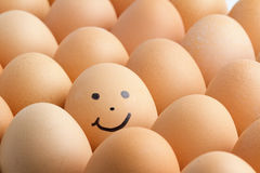 Eggs, smiling. Eggs, smiling on white background Royalty Free Stock Photography