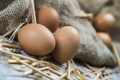 Eggs Royalty Free Stock Photography