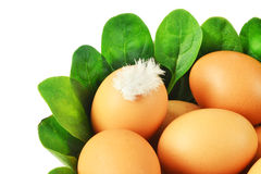 Eggs and spinach Stock Photo