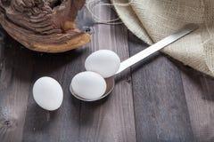 Eggs on a spoon Stock Photos