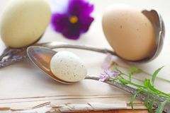 Eggs with spoons on vintage pages Stock Photography
