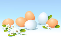 Eggs and spring flowers on blue background Stock Images