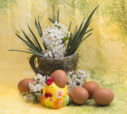 Eggs and spring flowers Stock Image