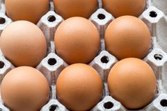9 eggs stack on the tray stock image