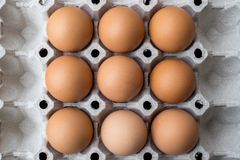 Eggs stack on the tray stock image