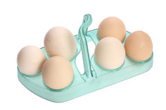 Eggs in the stands Stock Images
