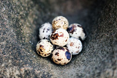 Eggs on the stone surface Royalty Free Stock Image