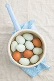 Eggs in a strainer. Fresh light green eggs from Easter egger chicken and brown eggs in a saucepan Royalty Free Stock Photos