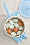 Eggs in a strainer. Fresh light green eggs from Easter egger chicken and brown eggs in a saucepan Stock Photography