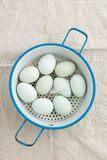 Eggs in a strainer. Fresh light green eggs from Easter egger chicken in a kitchen strainer Stock Images