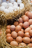 Eggs on straw. Eggs in bamboo basket protected by  hay Stock Photo