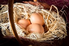Eggs in the straw and basket Royalty Free Stock Photo