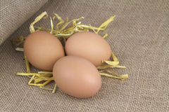 Eggs with straw on burlap royalty free stock photo