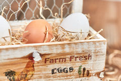 Eggs with straw in an egg box Royalty Free Stock Images