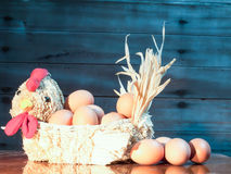 Eggs in straw hens royalty free stock images