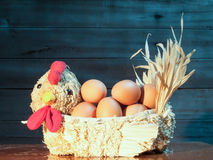 Eggs in straw hens royalty free stock photos