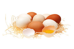Eggs in a straw nest. Eggs in straw nest isolated on white background Royalty Free Stock Image