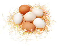 Eggs in straw nest. Eggs in straw nest isolated on white background Royalty Free Stock Images