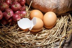 Eggs on straw. With still life Royalty Free Stock Photo