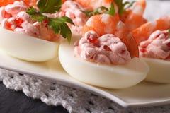 Eggs stuffed with shrimp, cream cheese and caviar closeup. horiz Royalty Free Stock Photo