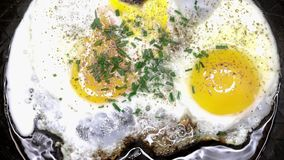 Eggs sunny side up. In a pan stock footage