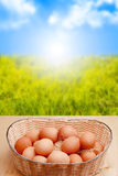 Eggs and sunrise Stock Photo