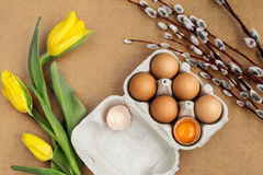 Eggs on the table. Easter eggs with willow branch stock photo
