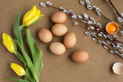 Eggs on the table. Easter eggs with willow branch royalty free stock images