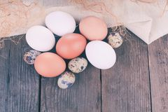 Eggs on textile Stock Images