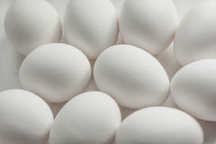 Eggs texture. Background from ten white eggs Royalty Free Stock Photo