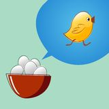 Eggs are thinking that they will become chickens Stock Image