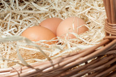 Eggs. Three chicken eggs in a basket Stock Photo
