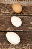 Eggs. Three different kinds of eggs Stock Photo