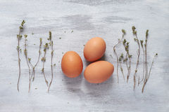 Eggs and thyme on a light background. Three eggs and thyme on a light background Royalty Free Stock Photo