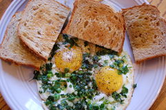 Eggs and Toast. Toast and fried eggs topped with scallions Royalty Free Stock Photography