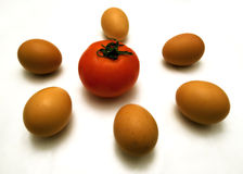 Eggs and tomato Stock Image